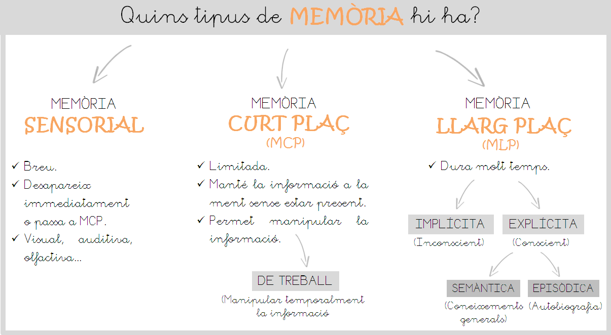 ESQUEMA TIPUS MEMÒRIA